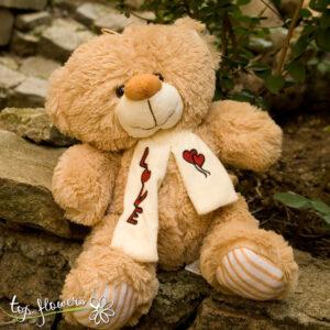 Teddy bear | 38 cm. |