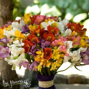 Bouquet 51 Colorful Alstromeries