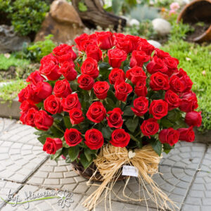 Basket 101 Red Roses