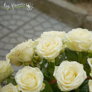 Basket of 51 ecru or white roses
