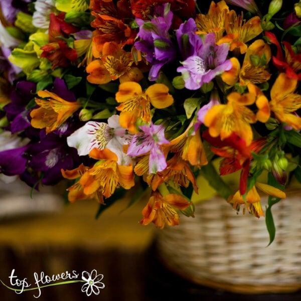 Basket of 101 chrysanthemums