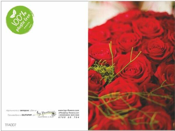 Postcard TFA007