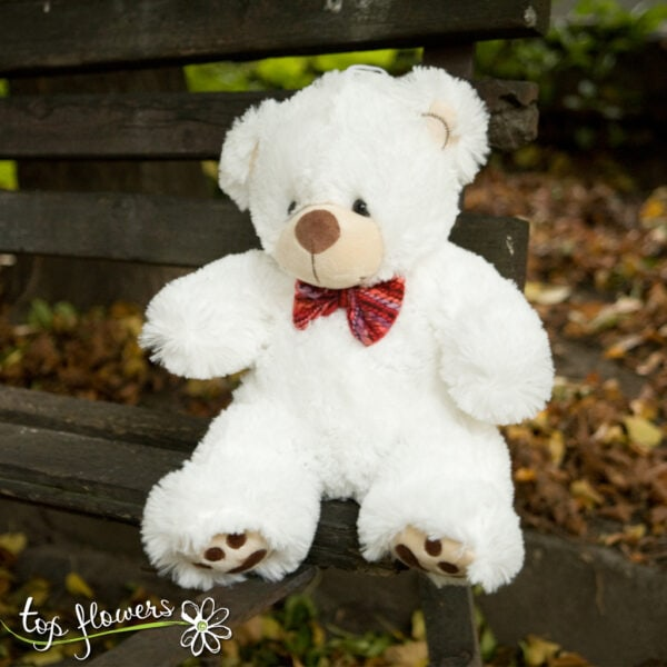 Teddy bear   38 cm.  