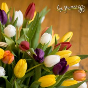 Basket 101 tulips | Ah the tulip