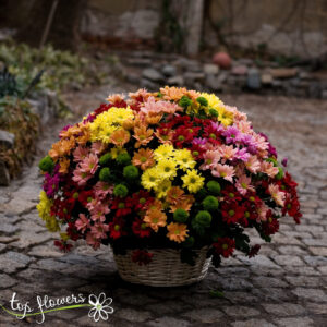 Basket of 51 chrysanthemums