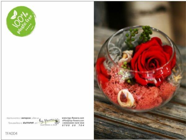 Postcard TFA004