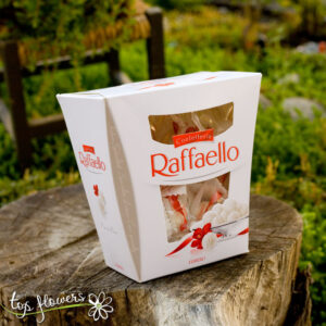 Chocolates Raffaello | 230 gr.