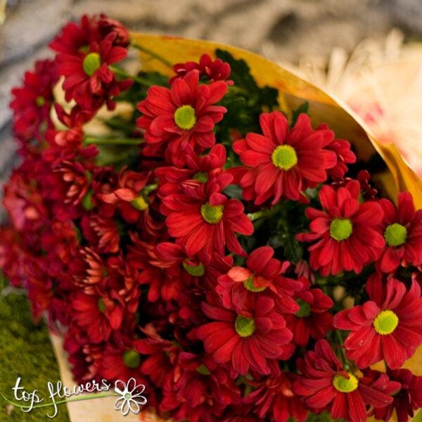 Букет от хризантеми | ЧЕРВЕНИ