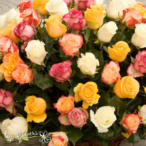 Basket 101 Roses Mix