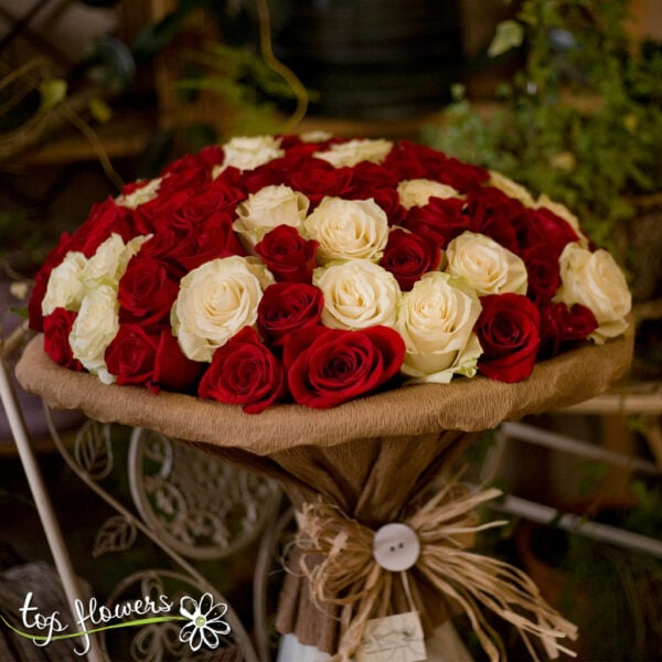 101 red and white roses
