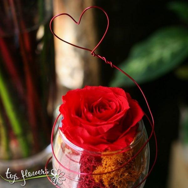 chashka s vechna roza 2
