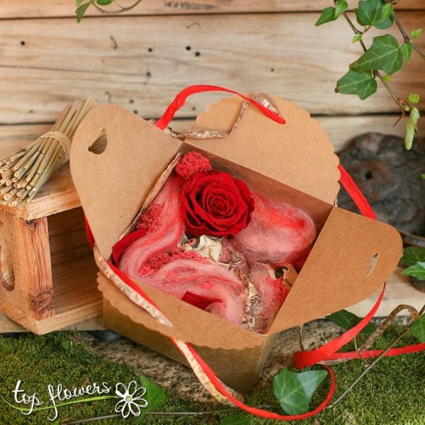 chervena kutiyka roza 2