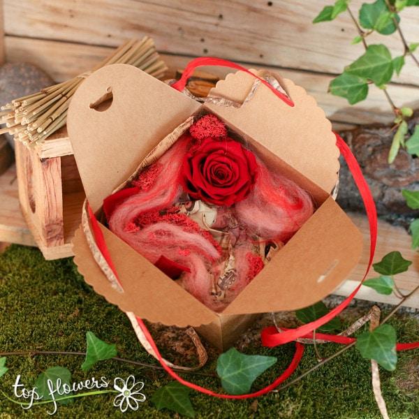 chervena kutiyka roza 3