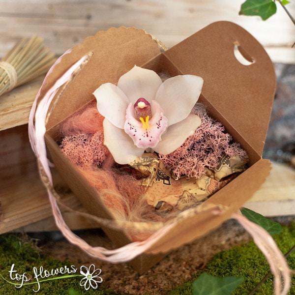 rozova kutiyka orhideya 1