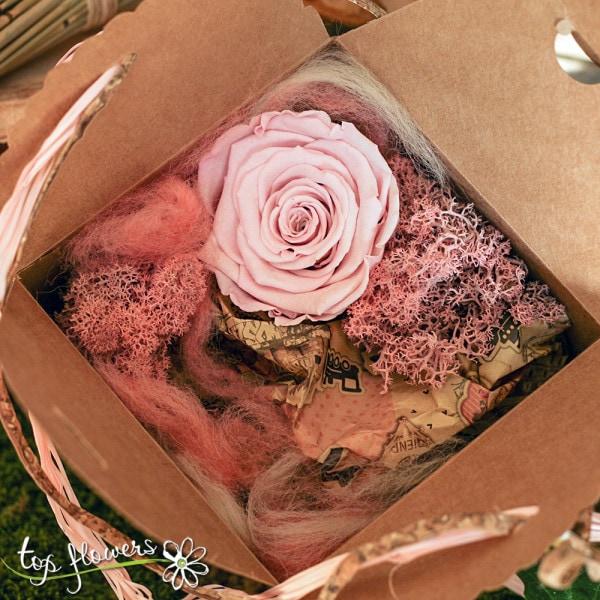 rozova kutiyka roza 4
