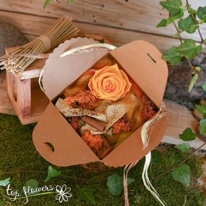 zhalta kutiyka roza 2