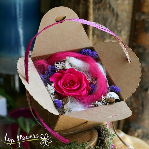 vechna roza v kutia tsiklamena